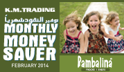 Monthly Money Saver February 2014